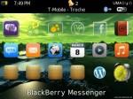 BlackBerry_pictures_QL_0981274935-300x225
